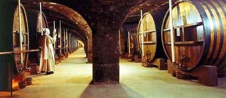 Licor Chartreuse, el secreto francés | The Mystery of the Chartreuse Liqueur | Scoop.it