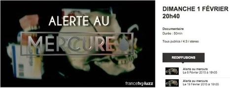 Paris 15 ostéopathe: Alerte au mercure | études et santé | Scoop.it