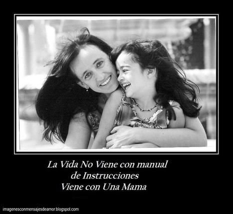 La Vida No Viene con manual | Chistes Graciosos Cortos | Scoop.it