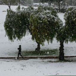 Snow in Jerusalem as winter weather intensifies; school canceled - National | Jewish Education Around the World | Scoop.it