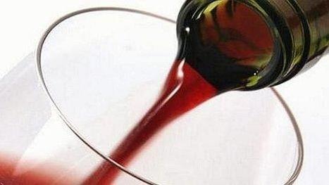 Les exports de vins de Bourgogne sont en très nette baisse, mais récolte en hausse   Le vin quotidien   Scoop.it