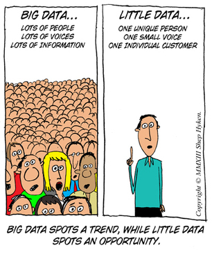 Does Your Customer Experience Require Big Data or Little Data | Customer Experience | The How not the Why | Scoop.it