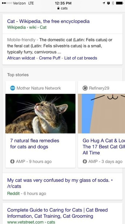 Should You Optimise Content for Google AMP and Facebook Instant Articles? | Online Marketing Resources | Scoop.it