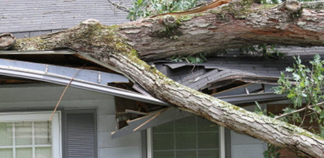 The Michigan Property Network — Find Good Repairing Storm Damage Services Provider | Elisha | Scoop.it