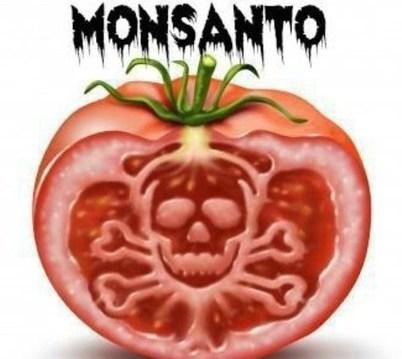 Ecco la lista nera elaborata da Greenpeace degli alimenti che comunemente assumiamo e che contengono OGM | CURIOSITY | CIBO, BENESSERE E RELAX | Scoop.it