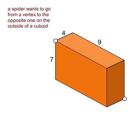 MEDIAN Don Steward secondary maths teaching: spider on a cuboid | Great Maths Teaching Ideas | Scoop.it