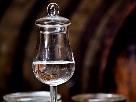 Cuatro curiosidades poco conocidas sobre la ginebra | GinTonics | Scoop.it