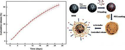 Research: Controlled therapeutic release of macromolecules possible | Nanotechnology News | Scoop.it