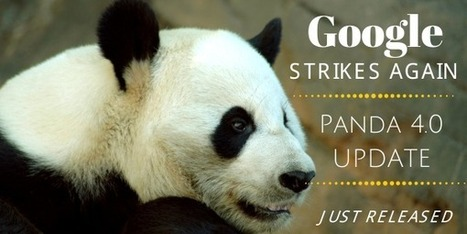 Google Rolls Out Major Panda 4.0 SEO Update | Content Marketing | Scoop.it