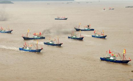 Study: China Under-Reporting Distant Water Fishing - Voice of America | STEM Connections | Scoop.it