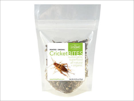 Regional Edible Insect Industry Envisioned By Hopping Startup | Entomophagy: Edible Insects and the Future of Food | Scoop.it