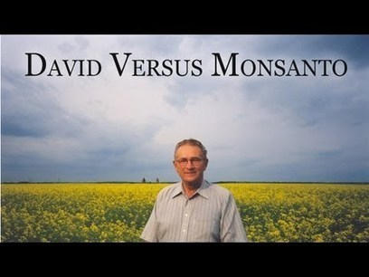 David contre….. Monsanto! | Des 4 coins du monde | Scoop.it