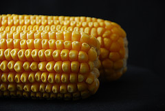 South African yellow-corn crop exceeds white 1st time since 1995 | Maize | Scoop.it