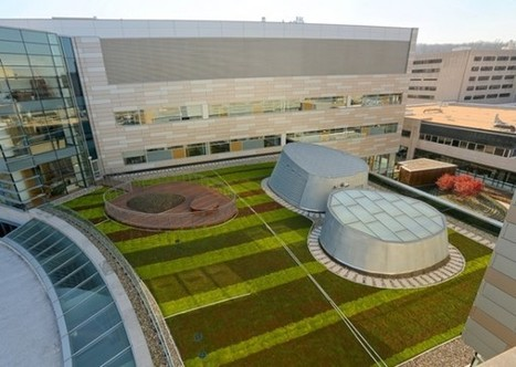 Green Roofs Help Brighten Up Hospital Stays | Arrival Cities | Scoop.it