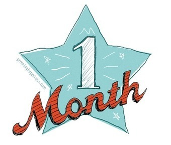 One Month Blogiversary; A Monthly Summary of Success | PrinzeCharming | Scoop.it