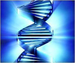 A MicroRNA That Drives Both Cancer Onset and Spread Identified | Cancer - Advances, Knowledge, Integrative & Holistic Treatments | Scoop.it