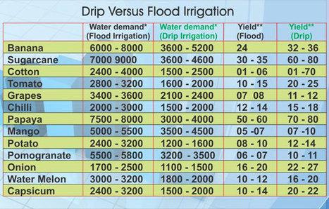 Drip Irrigation : Drip Irrigation,Micro irrigation,Irrigation,India drip irrigation,Green house | Keesen Crop Management | Drip Irrigation | Scoop.it
