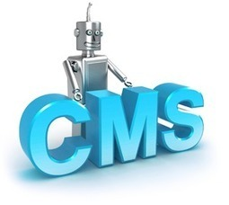 Common Flaws to Be Aware of When Choosing a CMS | Webiste Design & Development | Scoop.it