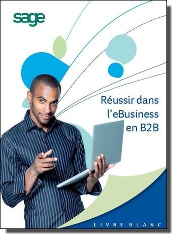 Livre Blanc : Réussir dans l'ECommerce B2B | WebZine E-Commerce &  E-Marketing - Alexandre Kuhn | Scoop.it