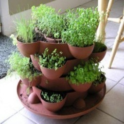 Christina Sarich ~ 9 Healing Herbs For A Natural Medicine Cabinet ... | herbs | Scoop.it
