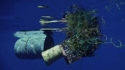 Le plastique : menace sur les océans   Planète bleue en alerte rouge   Scoop.it