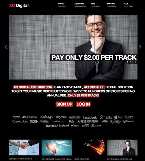 XO Digital - Wordpress customization | Web design | Scoop.it