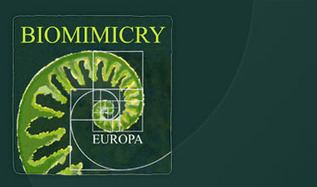 Biomimicry Europa | Moove it !  On se bouge ! | Scoop.it