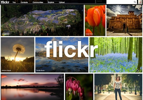 How to use the New Flickr for Search | Pedagogy | Scoop.it
