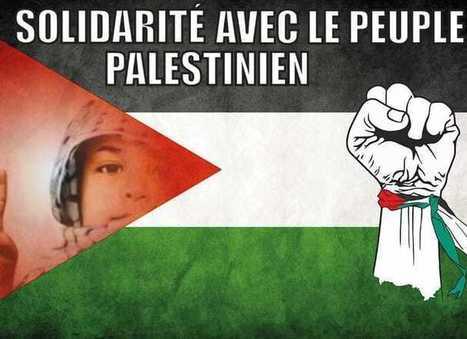 Brèves des territoires occupés par Israël | World News | Scoop.it