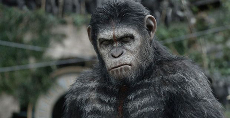 Dawn of the Planet of the Apes | Film Reviews with Blazing Minds | Scoop.it