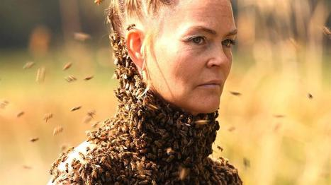This Woman Wears Thousands of Swarming Bees—to Meditate | Theory of Knowledge | Scoop.it