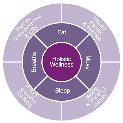 Wellness Mandala: Quantified Self and Holistic ... - FutureCrafting | Internet of Things - Quantified Home | Scoop.it