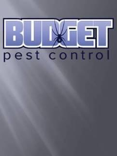 Budget Pest Control, Veterinarians in Centennial, CO - FindItNow | martingaptilss | Scoop.it