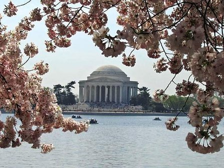 Spring comes sooner to Phila. - and that's not good | Sustain Our Earth | Scoop.it
