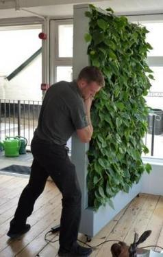 WLT unveils mobile 'green wall' for Halesworth in Bloom   World Land Trust   Vertical Farm - Food Factory   Scoop.it