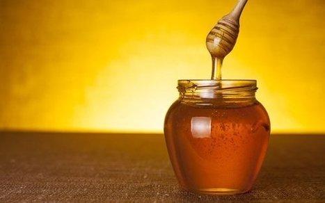10 Evidence-Based Health Benefits of Honey   Bazaar   Scoop.it