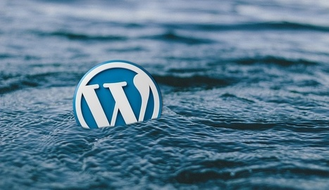 13 Free WordPress Plugins for Building your Ecommerce Store | Web Design | Scoop.it