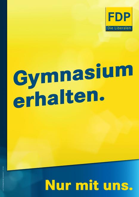 130618_Themenplakat_Gymnasien_erhalten.jpg (1170x1656 pixels) | Gymnasium und Gemeinschaftsschule | Scoop.it