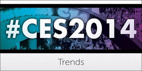 Four Trends from CES 2014 | Renzo Gracie academy MMA, Jiu Jitsu, Muay Thai in Brooklyn, NY | Scoop.it