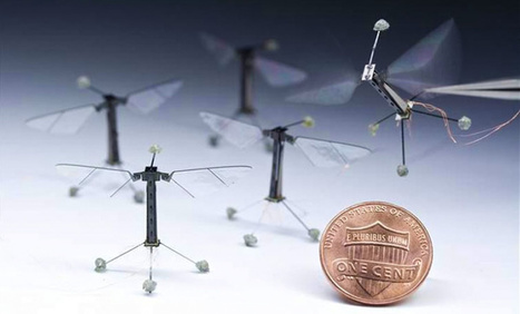 World's smallest aerial drone from Harvard roboticists | Hashslush --- Design, Technology, Social Media, Advertising, Mobile, Gadgets | Scoop.it