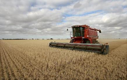 Closely-watched GM farm case begins in Australia | Sustain Our Earth | Scoop.it