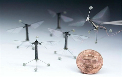 Micro-robots and programmable bees | Heron | Scoop.it