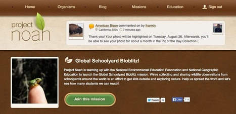 Free Technology for Teachers: Global Schoolyard Bioblitz - A Global Nature Lesson from Project Noah | Aprendiendo a Distancia | Scoop.it