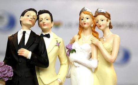 «Mariage pour tous»: Une proposition de loi sur la clause de conscience des maires | Tout le web | Scoop.it