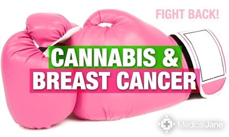 Cannabinoids May Help Treat Breast Cancer | How Cannabis Will Change the World! | Scoop.it