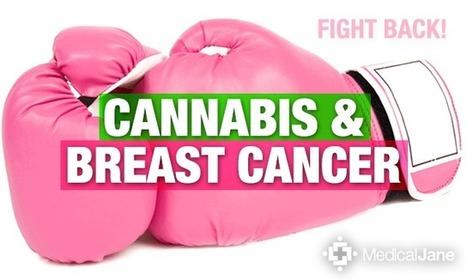 Cannabinoids May Help Treat Breast Cancer | Cannabinoid Issues | Scoop.it