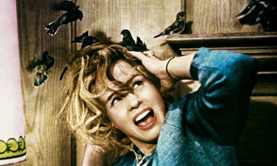 Michael Bay to produce remake of Alfred Hitchcock's The Birds | Machinimania | Scoop.it