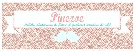 Blog Nail Art et Beauté de Pinezoe | Prothésiste ongulaire  - Formation à distance Educatel | Scoop.it