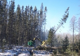 Changing Timberland Ownership Creates Challenges for Lake States Forest Industry | Timberland Investment | Scoop.it