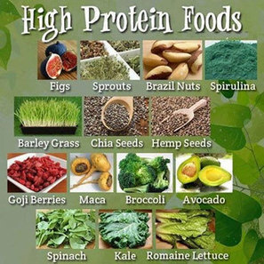 Best plant-based foods high in protein | Fitness and Nutrition on the Fly | Scoop.it